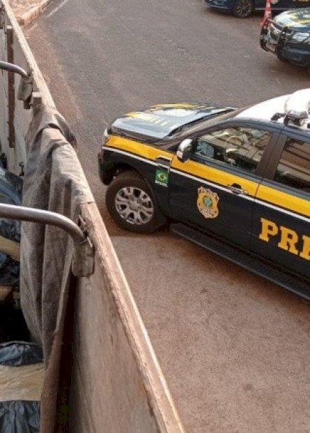 PRF apreende mais de 4,7 toneladas de maconha em Dourados
