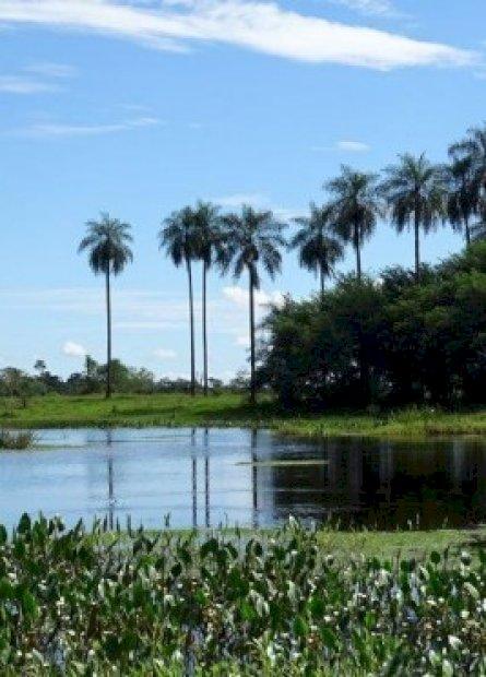 Projeto de concessão de parques estaduais vai alavancar o turismo do Estado, avaliam prefeitos